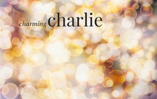 charming-charlie-v2-600x503